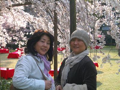20080403_8daigo