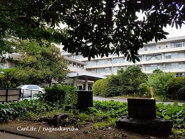 慶應義塾大学病院へ通院